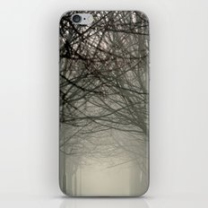 Branches meeting in the fog iPhone & iPod Skin