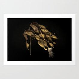 SEEDS 03 Art Print