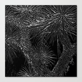 Joshua Tree Silver by CREYES Canvas Print
