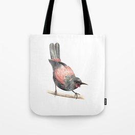 Tieke / Saddleback - a native New Zealand bird 2013 Tote Bag