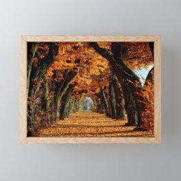 autumn Park Framed Mini Art Print