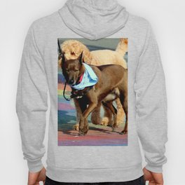 No Ifs, Ands, Or Butts! Hoody