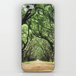 Canopy of Oaks iPhone Skin
