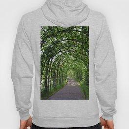 Walkway Hoody