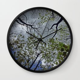 Tree canopy in the spring Wall Clock