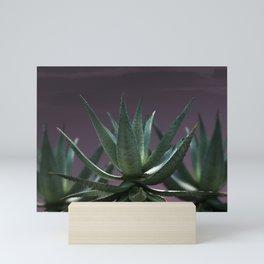 Aloe Aloe Aloe Mini Art Print