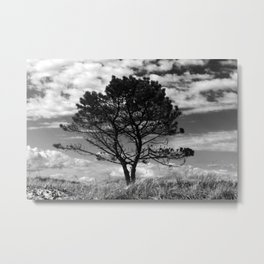 The Juniper Tree Metal Print