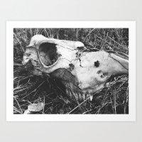 boneyard Art Print