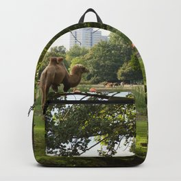 a momentary lapse of reason Backpack