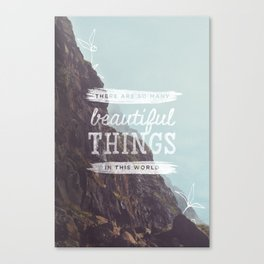 Beautiful Things Canvas Print