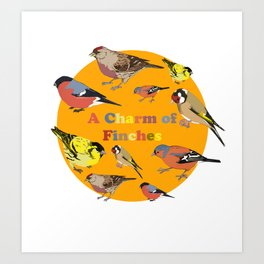 Charm of Finches Art Print