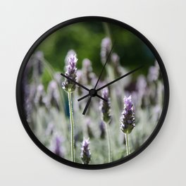 The Curious Stand Out Wall Clock