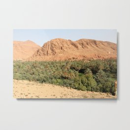 Oisis in Tinghir south of the High Atlas in Morocco Metal Print