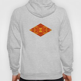 Amber Facets Hoody