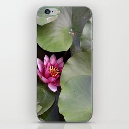 Pink Water Lilly iPhone Skin
