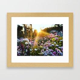 Magical Wildflowers Framed Art Print