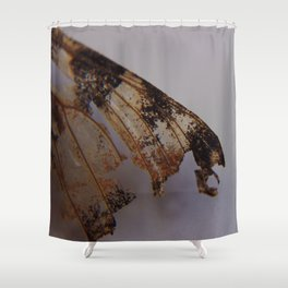 The Beat of a Butterfly's Wing Shower Curtain