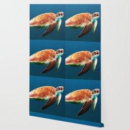 Turtley Wallpaper