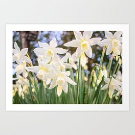 Kiss of Spring Art Print