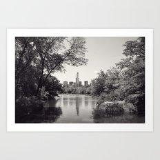 Central Park from Bow's Bridge Art Print
