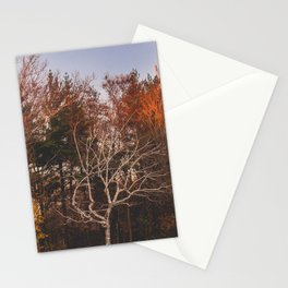 Himalaya Wanderings Stationery Cards