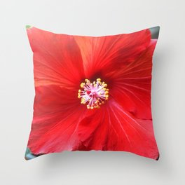 Fruit Punch Hibiscus, red flower close up, in my hipster garden Throw Pillow