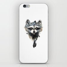 Raccoon stealing seeds! iPhone Skin