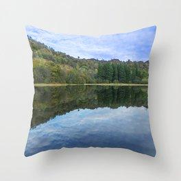 Nature. Throw Pillow