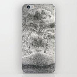 Debon 060411 iPhone Skin