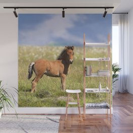 Watercolor Horse 39, Icelandic Pony, Höfn, Iceland, Paused in Curiosity Wall Mural