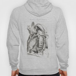 Human Anatomy Art Print CLAVICLE STERNUM CHEST Vintage Anatomy, doctor medical art, Antique Book Pla Hoody