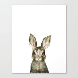 Little Rabbit Canvas Print