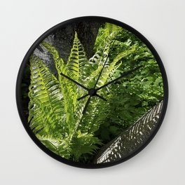 Ferns - the leaves and the shadows - against birch bark Wall Clock