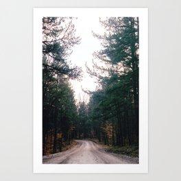 Hoosier National Forest Art Print