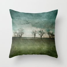 Onondaga Lake Park - Susan Weller Throw Pillow