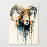 ram Canvas Prints featuring Ram by Slaveika Aladjova