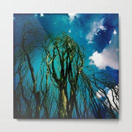Dark Trees  Metal Print