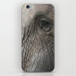 Elephant Detail iPhone Skin