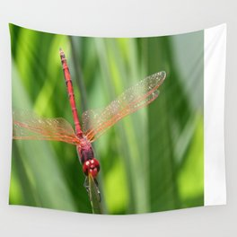 Closeup of Red Skimmer or Firecracker Dragonfly Wall Tapestry