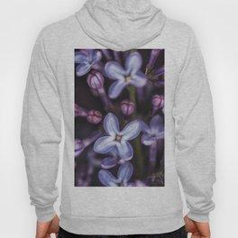 Lilacs close up Hoody