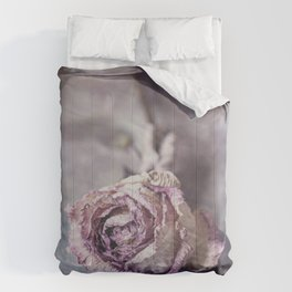 Dried Rose Comforters