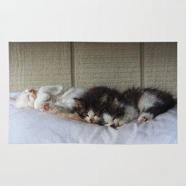 Sleeping Beauties Rug