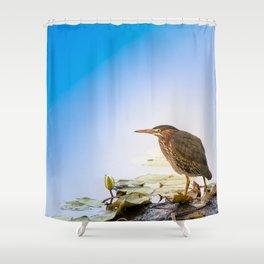 Crowned Night-Heron- Hammond pond Shower Curtain