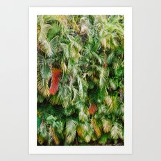 In Love with the Fall in the Tropics Art Print