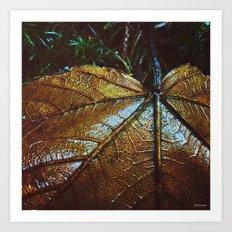 mix of seasons Art Print