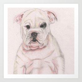 Cute White Hand Drawn English Bulldog Puppy Art Print