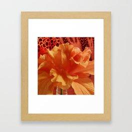 Hibiscus Framed Art Print
