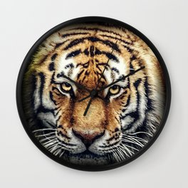 Tiger Stare Wall Clock