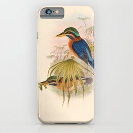 Actenoides Concretus Kingfisher Birds iPhone Case