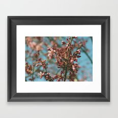 And My Lonely Heart is Beating Slow Framed Art Print